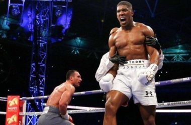 Heavyweight boxing superstar Anthony Joshua added 220,000 Twitter followers after title fight